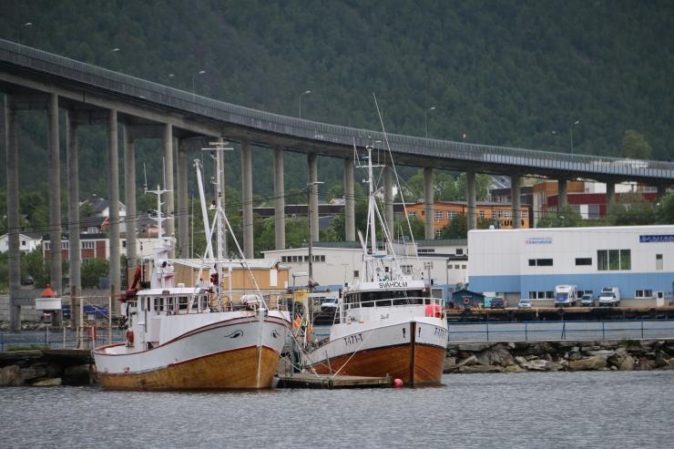 Tromsøbrua Tromsø-Brücke